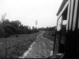 Road into Jonestown