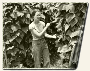 Carolyn Moore Layton with cutlass bean plant, Jonestown, May 1978