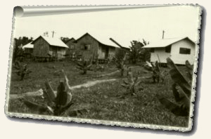 Houses in Jonestown, May 1979