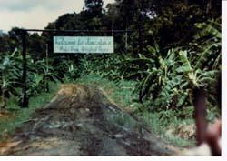 The Jonestown Report, November 2007, Volume 9