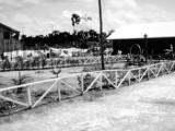 Pathway in Jonestown